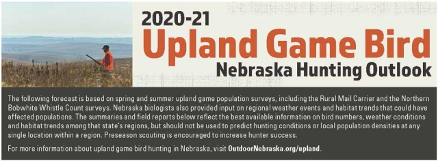 2020-2020 Upland Game Bird Nebraska Hunting Outlook