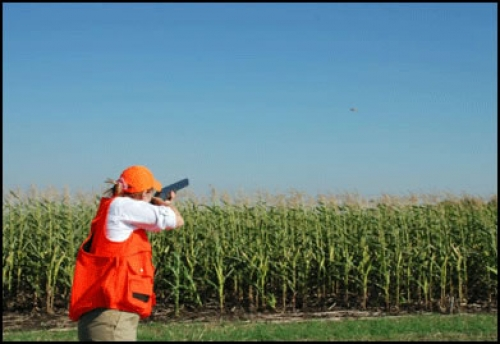 Pheasant Fun With the NRA's Women On Target